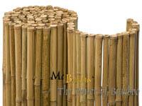 Mc-Bambus Detailansicht  Bambusrollzaun Natur