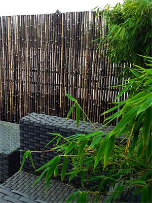 Mc-Bambus Bambus Zäune